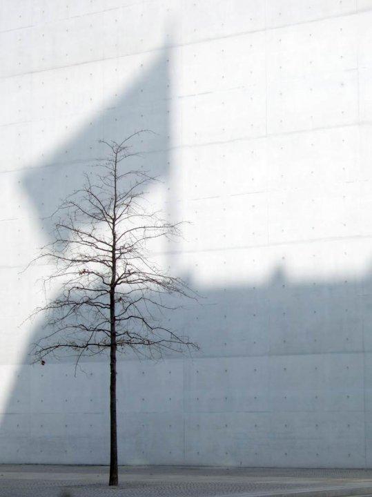 Berlin 2010, Mahnac